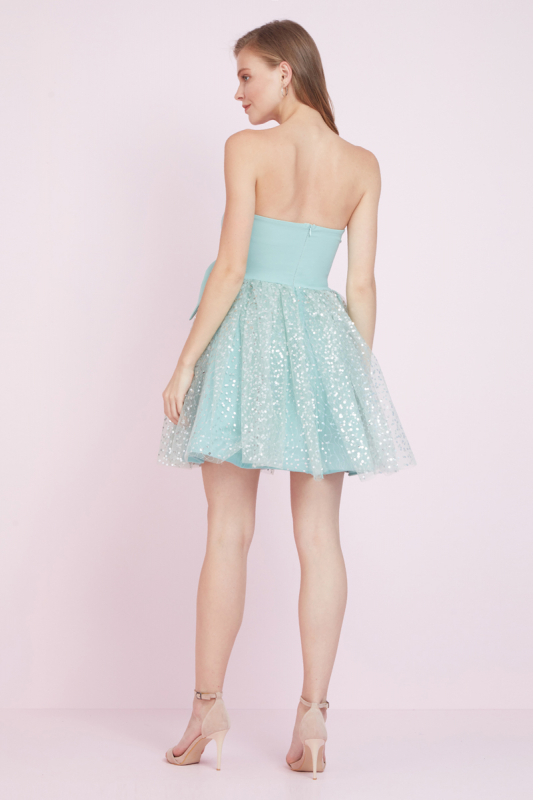 Mint green tulle sleeveless mini dress