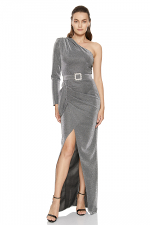 Silver velvet 13 single sleeve maxi dress